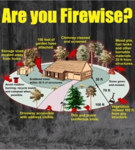 firewise-infographic