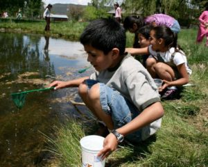 colorado-alliance-for-environmental-education