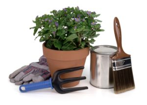potted plant, gardening tool, gloves, paint brush & paint can
