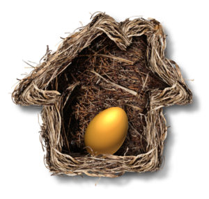 Home finances and residential equity symbol as a bird nest shaped as a family house with a gold egg inside as a metaphor for financial security planning and investing in real estate for retirement freedom.