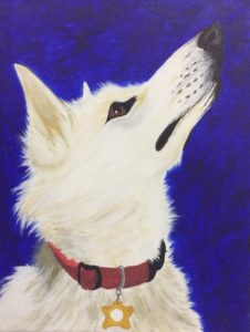 pet-portrait-3