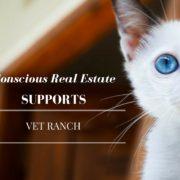 vet ranch, conscious real estate, real estate agency in Denver, Denver real estate company, real estate agency in denver, denver housing market